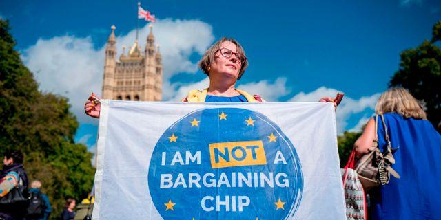 En demonstrant utanför brittiska parlamentet i London i september 2017.  TOLGA AKMEN / AFP