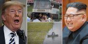 Trump, Kim och bilder från Nordkorea. Arkivbilder. TT