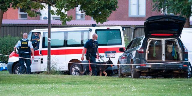 Polis på plats efter dödsskjutningen i Köpenhamnsförorten Herlev på tisdagskvällen Johan Nilsson/TT / TT NYHETSBYRÅN