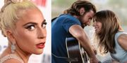 "Lady Gaga och Bradley Cooper i ""A star is born"". TT"