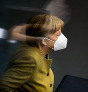 Angela Merkel. Markus Schreiber / TT NYHETSBYRÅN