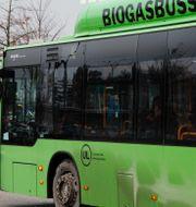 Buss från Upplands lokaltrafik. Martina Holmberg / TT / TT NYHETSBYRÅN