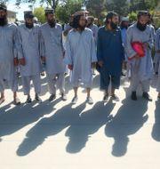 Talibaner som släppts fria i samband med det fångutbyte som påbörjats i veckan. Rahmat Gul / TT NYHETSBYRÅN