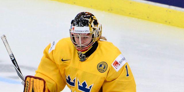 Folj damkronorna sportbladet rapporterar live