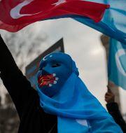 Demonstranter ur folkgruppen uigurer under protest i Istanbul. Emrah Gurel / TT NYHETSBYRÅN
