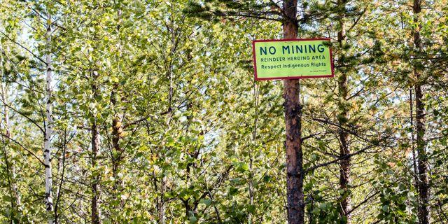 Bild från protesterna när brittiska gruvbolaget Beowulf försökte provbryta järnmalm i Kallak väster om Jokkmokk i augusti 2013. Arkivbild. SCANPIX / TT NYHETSBYRÅN