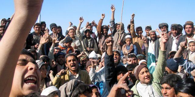 Pakistans regering avgar