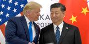 Donald Trump och Xi Jinping.  Susan Walsh / TT NYHETSBYRÅN/ NTB Scanpix