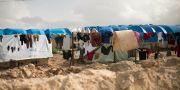 Bild från al-Hol lägret i Syrien.  Maya Alleruzzo / TT NYHETSBYRÅN/ NTB Scanpix