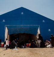 Bild från al-Hol-lägret i Syrien. Baderkhan Ahmed / TT NYHETSBYRÅN