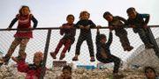 Bild från ett flyktingläger i Idlib. AAREF WATAD / TT NYHETSBYRÅN