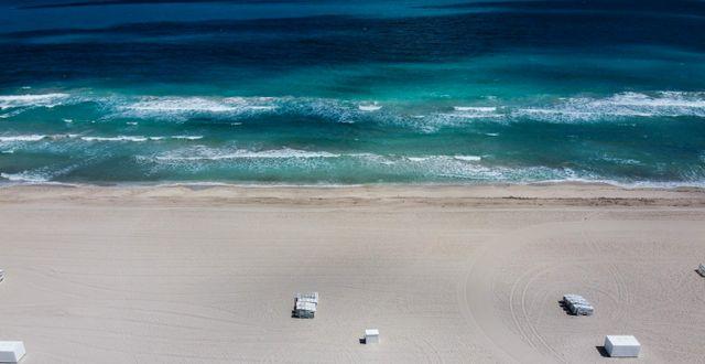 Illustrationsbild: En övergiven strand i Miami.  CHANDAN KHANNA / TT NYHETSBYRÅN