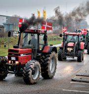 Traktorer rullar in på Köpenhamns gator. Nils Meilvang / TT NYHETSBYRÅN
