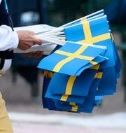 Arkivbild. Vimplar delas ut inför nationaldagsfirandet på Skansen i Stockholm 2014. CLAUDIO BRESCIANI / TT / TT NYHETSBYRÅN