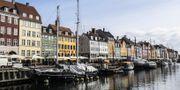 Illustrationsbild, Nyhavn i Köpenhamn.  TT.