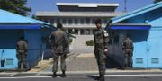Demilitariserade zonen, illustrationsbild. JUNG YEON-JE / AFP