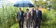 Arkiv, Stefan Löfven besöker Alibabas grundare Jack Ma. Maja Suslin/TT / TT NYHETSBYRÅN