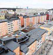Tensta í Stockholm. ALI LORESTANI/TT / TT NYHETSBYRÅN