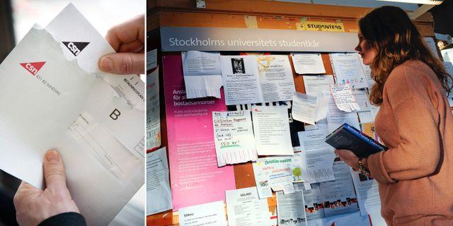 Illustrationsbild. Student på Stockholms universitet.  TT
