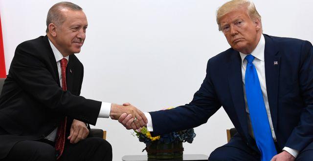 Erdogan och Trump. Susan Walsh / TT NYHETSBYRÅN