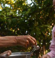 Buddhistiska nunnor tar emot allmosor. YE AUNG THU / AFP