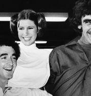 Harrison Ford, Anthony Daniels (som spelade C-3PO), Carrie Fisher (Leia Skywalker) och Peter Mayhew år 1978. TT NYHETSBYRÅN
