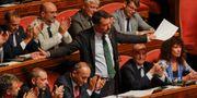 Matteo Salvini i mitten. Gregorio Borgia / TT NYHETSBYRÅN