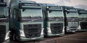Arkivbild: Volvo-lastbilar. BJÖRN LARSSON ROSVALL / TT / TT NYHETSBYRÅN