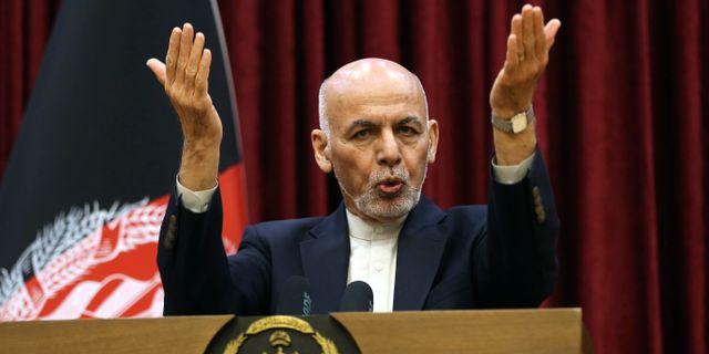 Afghanistans president Ghani. Rahmat Gul / TT NYHETSBYRÅN