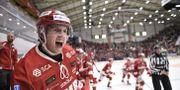 Timrås Johannes Kinnvall jublar efter slutsignalen i torsdagens ishockeymatch i SHL mellan Timrå IK och Växjö Lakers HC i NHK Arena. Erik Mårtensson/TT / TT NYHETSBYRÅN