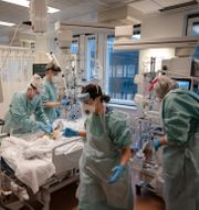 Bild från covid-iva på Östra sjukhuset i Göteborg Björn Larsson Rosvall /TT / TT NYHETSBYRÅN