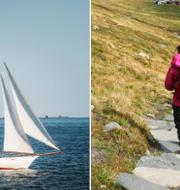 Många seglar och vandrar i sommar. TT