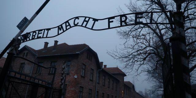 Porten till koncentrationsläget Auschwitz. KACPER PEMPEL / TT NYHETSBYRÅN