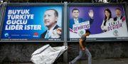 Valaffisher i Turkiet. HUSEYIN ALDEMIR / TT NYHETSBYRÅN