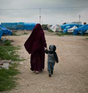Roj-lägret i nordöstra Syrien. Maya Alleruzzo / TT NYHETSBYRÅN