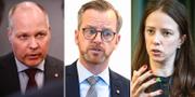 Morgan Johansson (S), Mikael Damberg (S) och Åsa Lindhagen (MP). TT