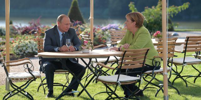 Rysslands president Vladimir Putin hälsade på den tyska förbundskanslern Angela Merkel på lördagen.  Sputnik Photo Agency / TT NYHETSBYRÅN