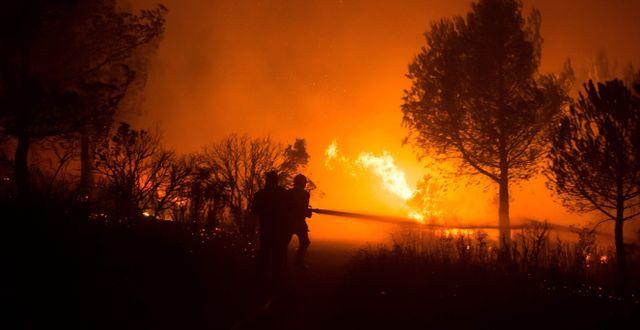 Arkivbild från skogsbränderna på Franska rivieran 2017.  BERTRAND LANGLOIS / AFP