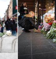 Blommor i Stockholm idag. TT