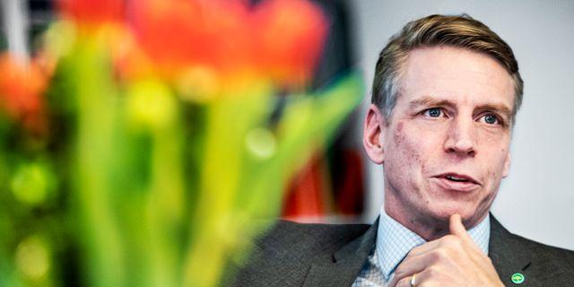 Per Bolund (MP). Tomas Oneborg/SvD/TT / TT NYHETSBYRÅN