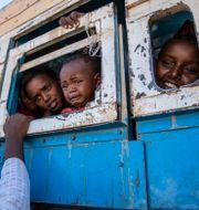 Flyktingar i Tigrayprovinsen. Arkivbild. Nariman El-Mofty / TT NYHETSBYRÅN