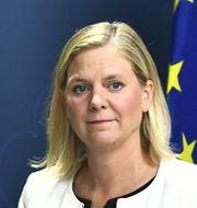 Finansminister Magdalena Andersson (S) håller pressträff om det ekonomiska läget och förutsättningarna för 2021 års budget. Claudio Bresciani/TT / TT NYHETSBYRÅN