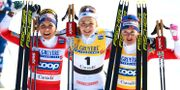 Bild från vinterns skid-VM. CH. KELEMEN / BILDBYRÅN