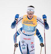 William Poromaa JOHANNA LUNDBERG / BILDBYRÅN