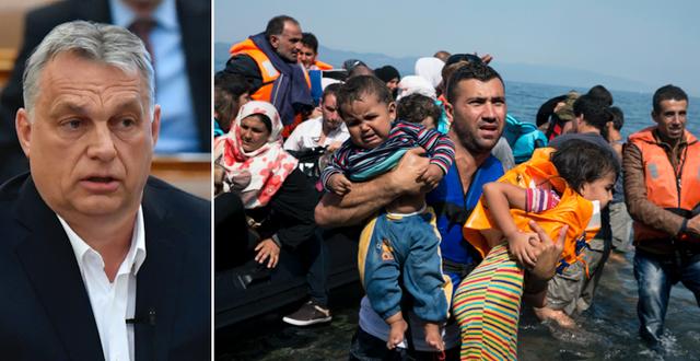 Ungerns premiärminister Viktor Orbán / Flyktingar på Lesbos 2015 TT