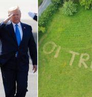 Melania och Donald Trump samt gräsmattan.  TT/Twitter