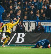 Elfsborgs Rasmus Alm jublar efter tredje målet. JESPER ZERMAN / BILDBYRÅN