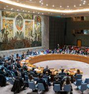 FN:s säkerhetsråd/Arkivbild. Mary Altaffer / TT NYHETSBYRÅN