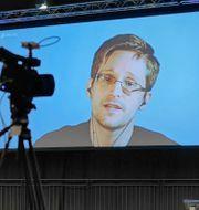 Edward Snowden under en videokonferens 2017. Sebastian Willnow / TT / NTB Scanpix