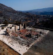 Nedbrunnet hus på Cypern.  Petros Karadjias / TT NYHETSBYRÅN